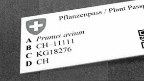 Pflanzenpass